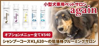 小型犬専用ペットサロンagain 東淀川店